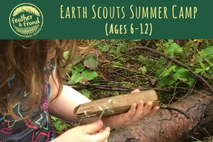 Earth Scouts Summer Camp @ Fairhaven Park | Bellingham | Washington | United States