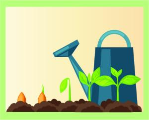 Veggie Gardening 101: Seeds vs. Starts @ WCLS South Whatcom Library | Bellingham | Washington | United States