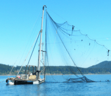 Deep Dive Into Whatcom's Fishing Sector: WFN Spring Forum @ Squalicum Boathouse | Bellingham | Washington | United States