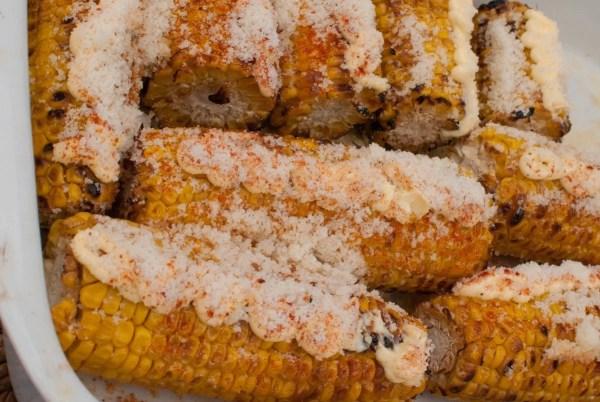 corn-19