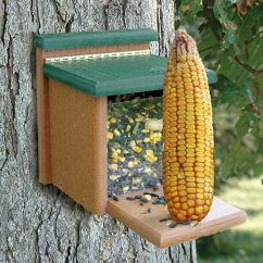 Squirrel Feeder Chair Covers Hamilton Ontario Feeding Squirrels  The Best Feeders On Market