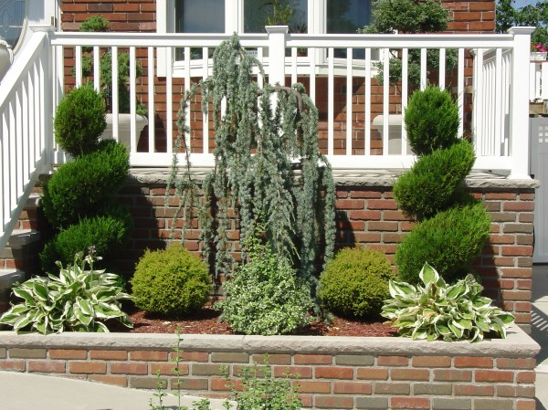 provide space weeping blue
