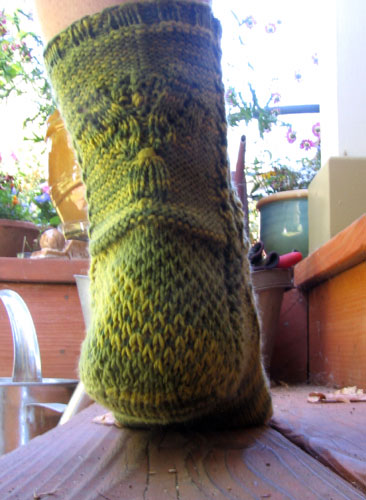 The green socks from the rear