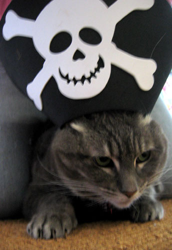 Shiver me timbers! says Maggie