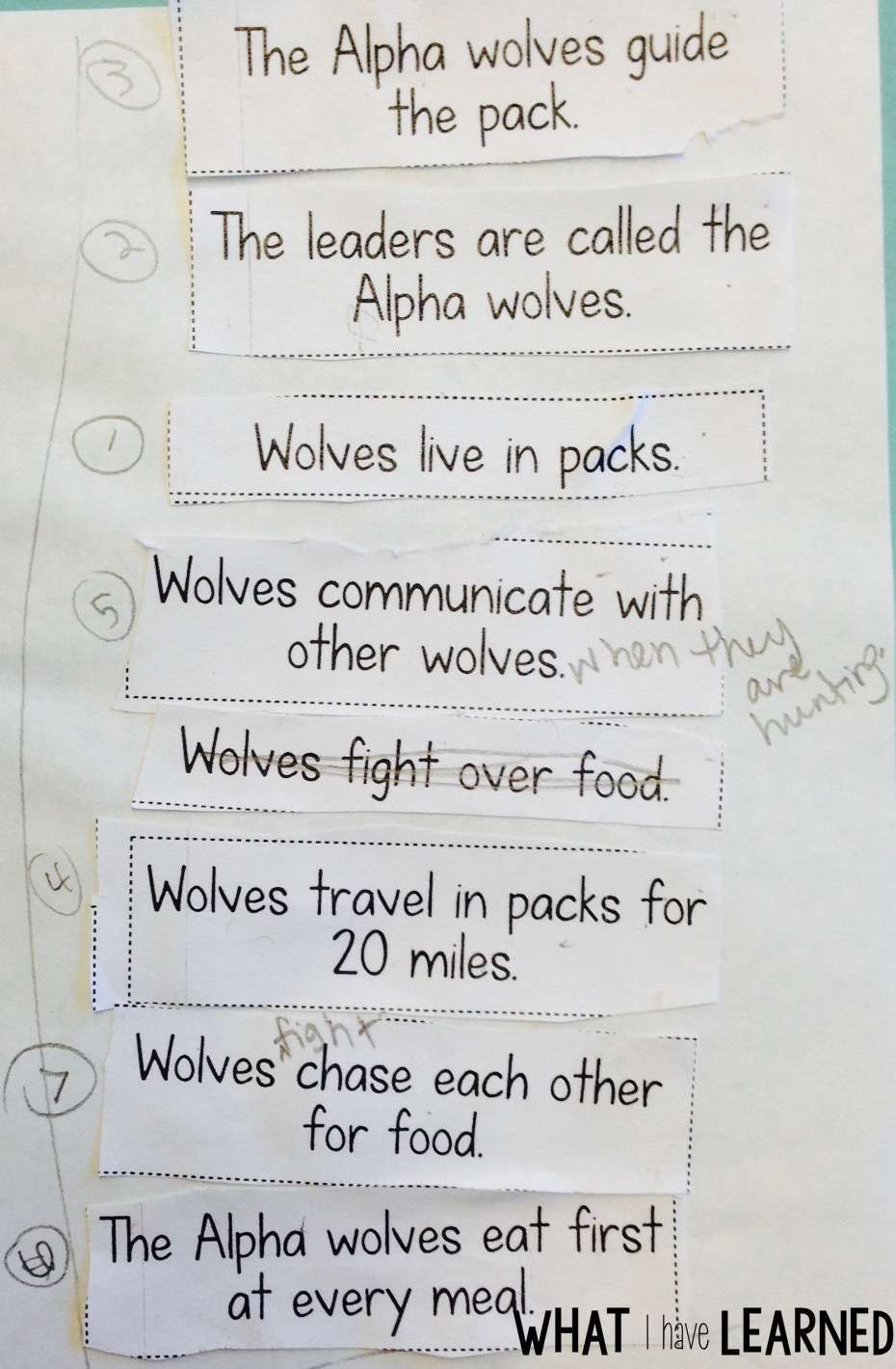small resolution of Find Related Facts and Order Facts - Informational Writing: Week 3 - Wolves