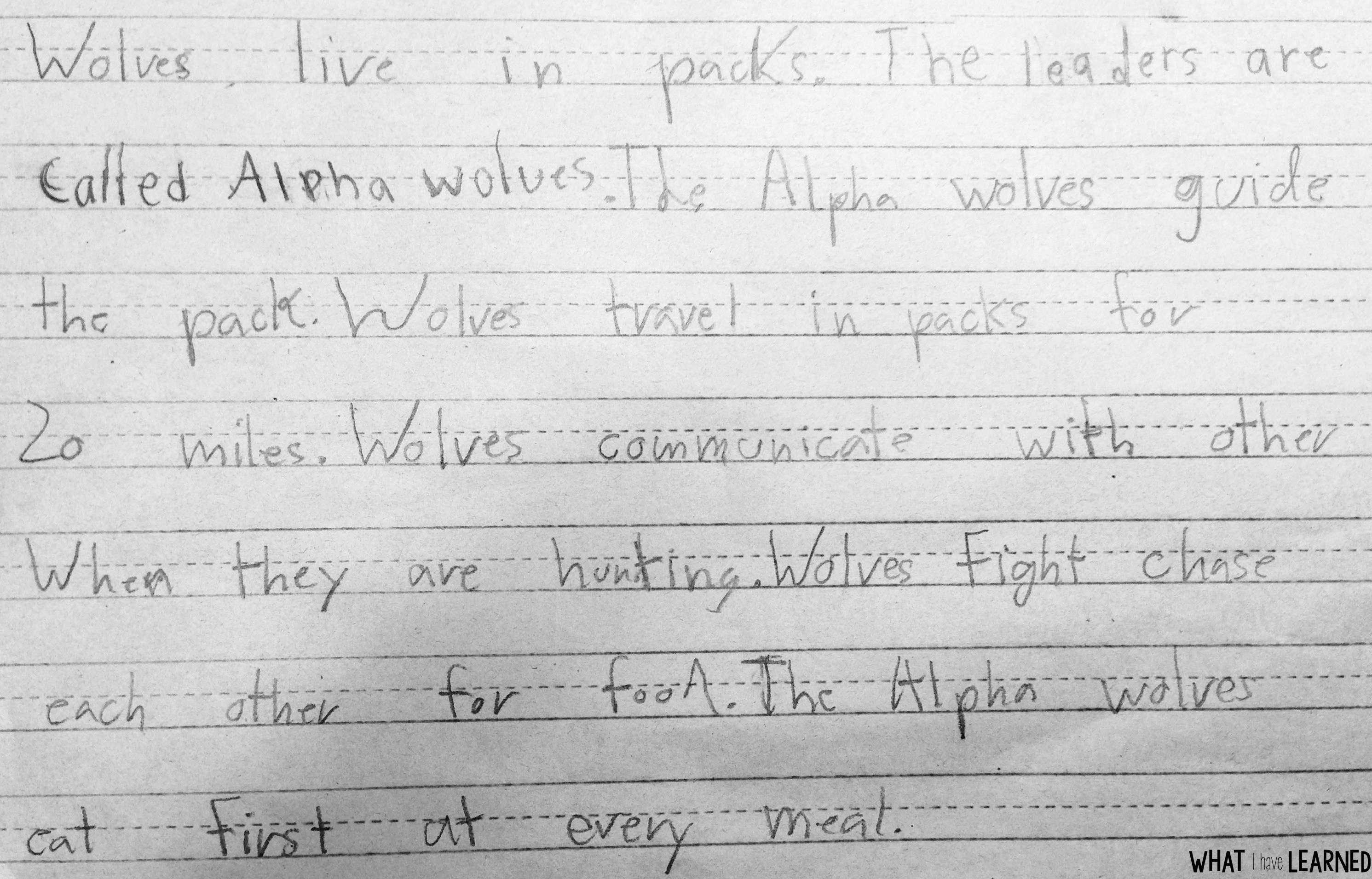 Find Related Facts and Order Facts - Informational Writing: Week 3 - Wolves [ 1912 x 2982 Pixel ]