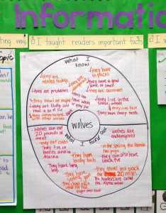 Are your students creating disorganized paragraphs when writing about information or expository text find out also related facts and order informational week rh whatihavelearnedteaching