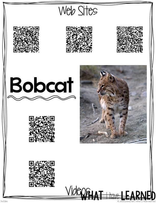 Desert Animals: Informational Article, QR Code Research