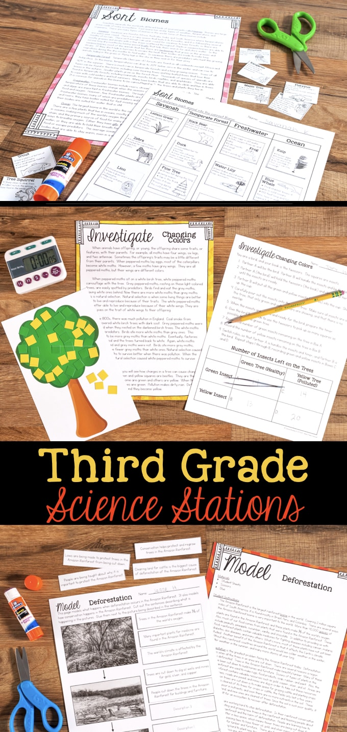 medium resolution of Third Grade Science Station Units