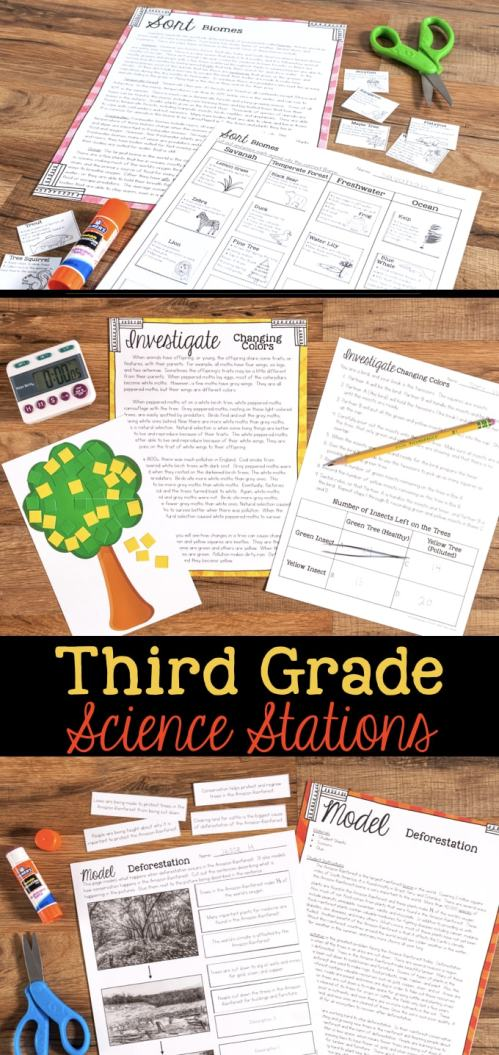 small resolution of Third Grade Science Station Units