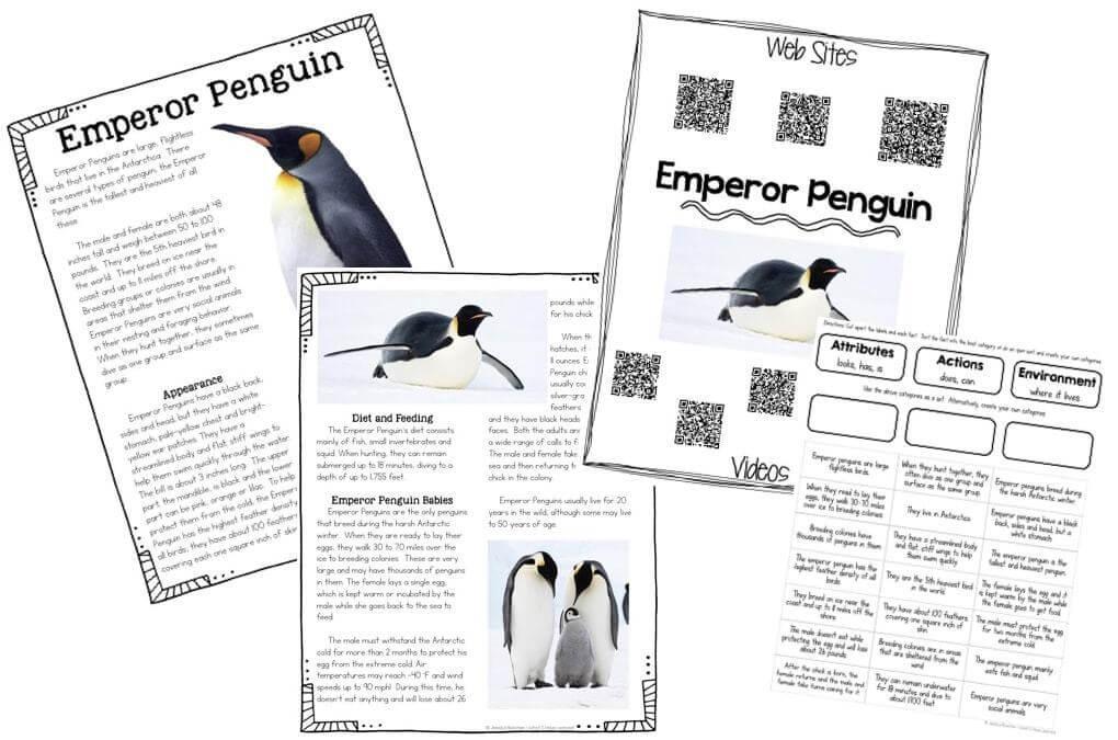 Penguins Worksheets Third Grade. Penguins. Best Free