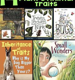 Books about Animal Traits for Elementary Students [ 1428 x 680 Pixel ]