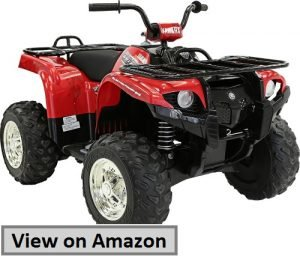 Yamaha Grizzly ATV