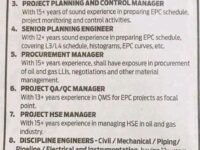 Opportunity of Discipline Engineers and Managers for