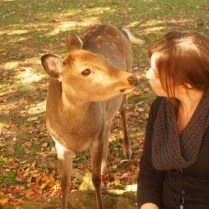 kyoto-day-5-kisses-for-the-deer_4105758863_o