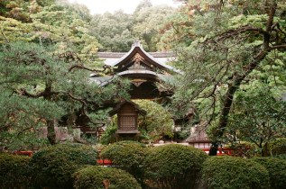 temple-in-the-forest_4115070492_o