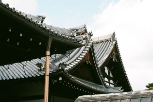 temple-roof_4115070626_o