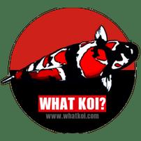 Koi Breeders