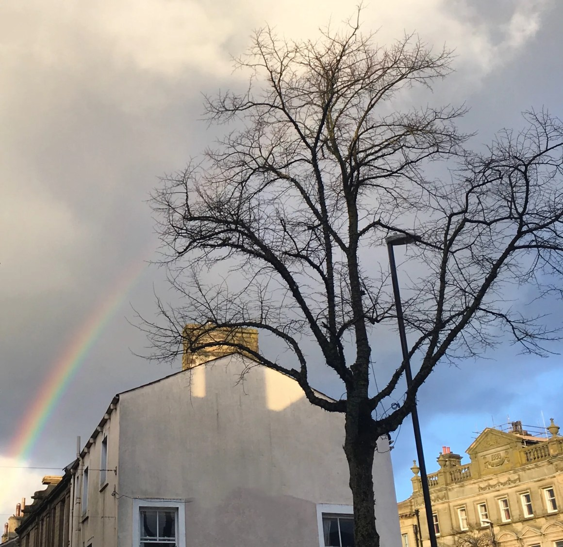 what-lizzy-loves-health-issues-rainbow