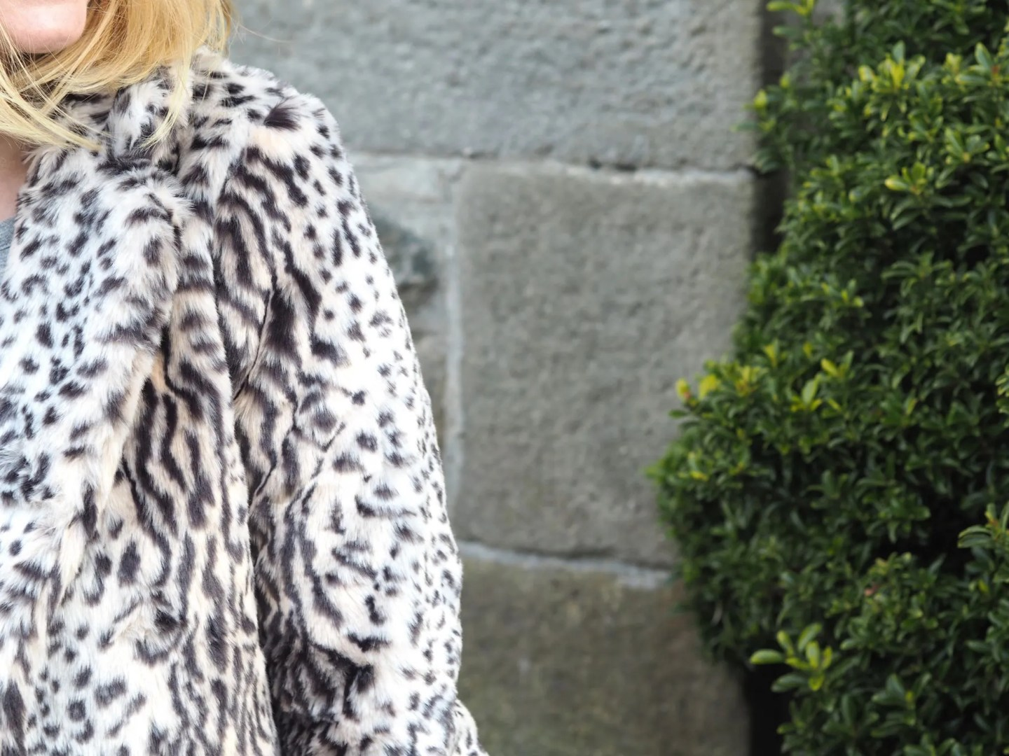 what lizzy loves leopard print coat