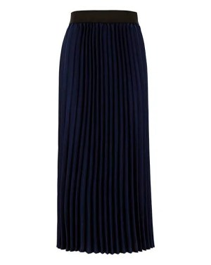 JDW Navy Sunray Pleated Skirt