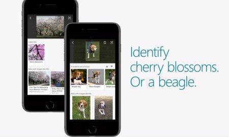 Microsoft Bing Visual Search