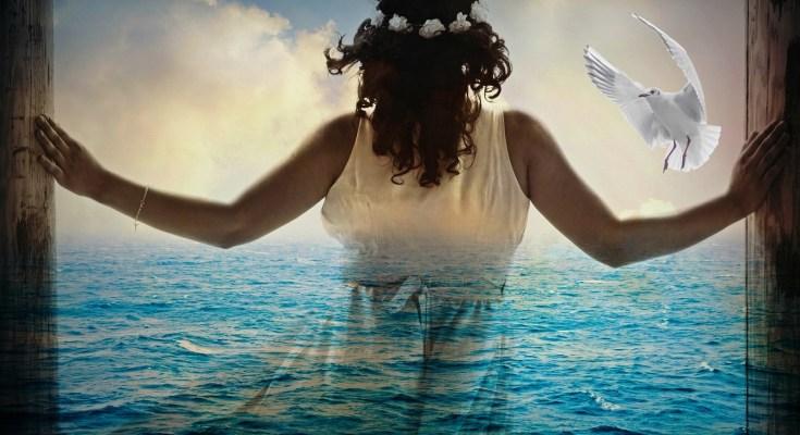 bird dream symbolism