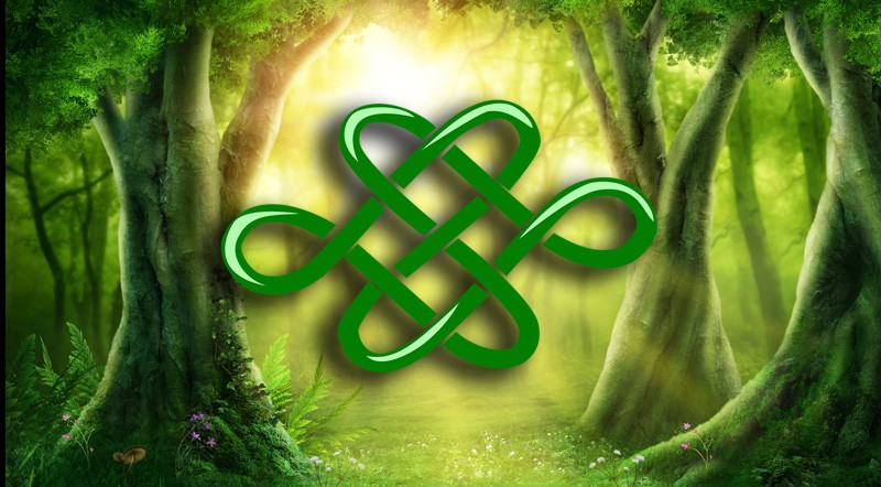 Dara Celtic Knot Meaning And Symbolism On Whats Your Sign