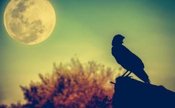 Native American Full Moon Names