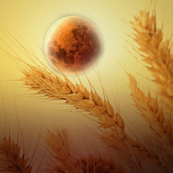 Native American Moon Signs And Meaning For September Harvest Moon