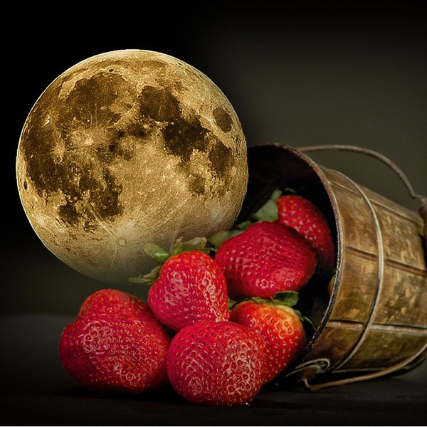 Native American moon signs for June - Strawberry moon