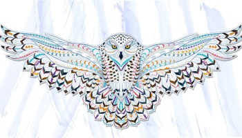 Animal Symbolism Owl Meaning On Whats Your Signcom