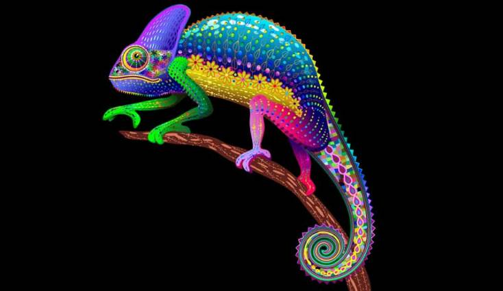 Animal Symbolism Dream Lizards And Meanings On Whats Your Sign