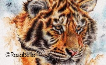 Tiger artwork and symbolic tiger meanings