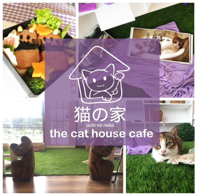 Uchi no Neko - The Cat House Cafe
