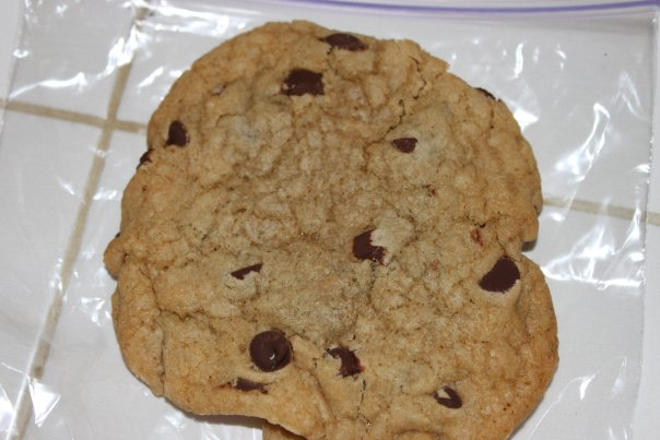 THE best chocolate chip cookies EVER!!