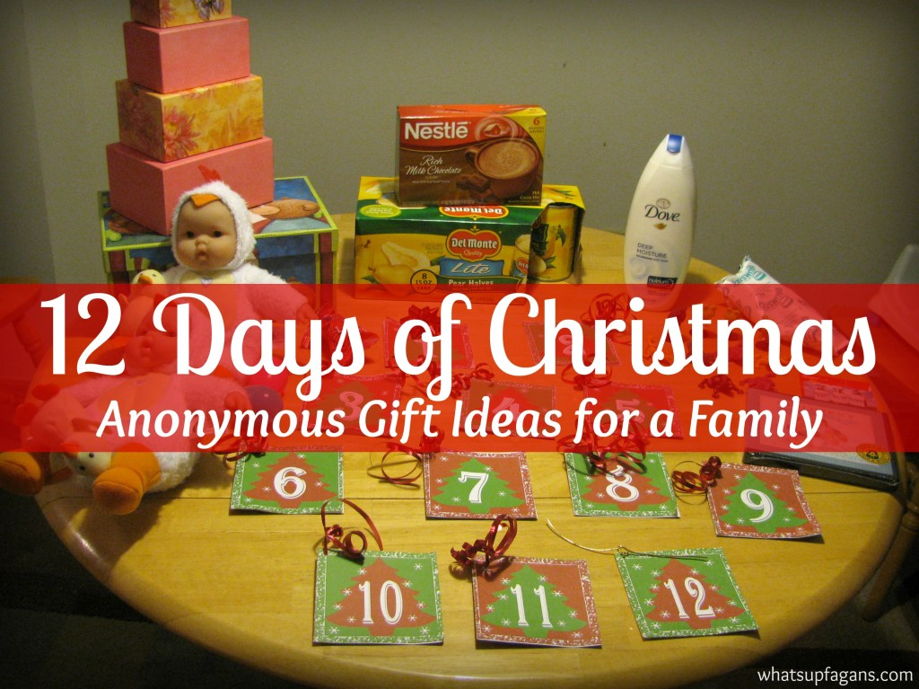 Anonymous Gift giving for the 12 Days of Christmas! 12 Days of Christmas Secret Santa gift ideas. Great way to create some Holiday magic for a family in need!