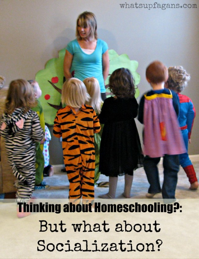 Homeschool socialization for children - Is it important? Is it needed? And what exactly is it?