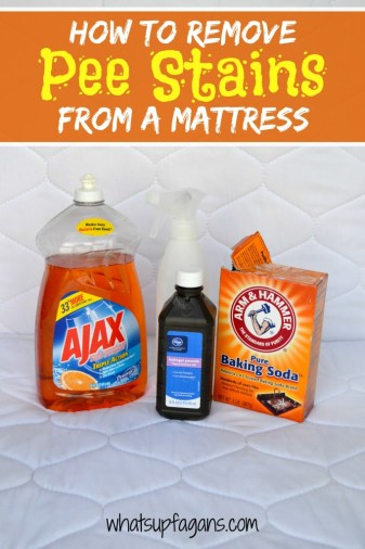 How to Remove Pee Stains from your mattress, and remove the smell!