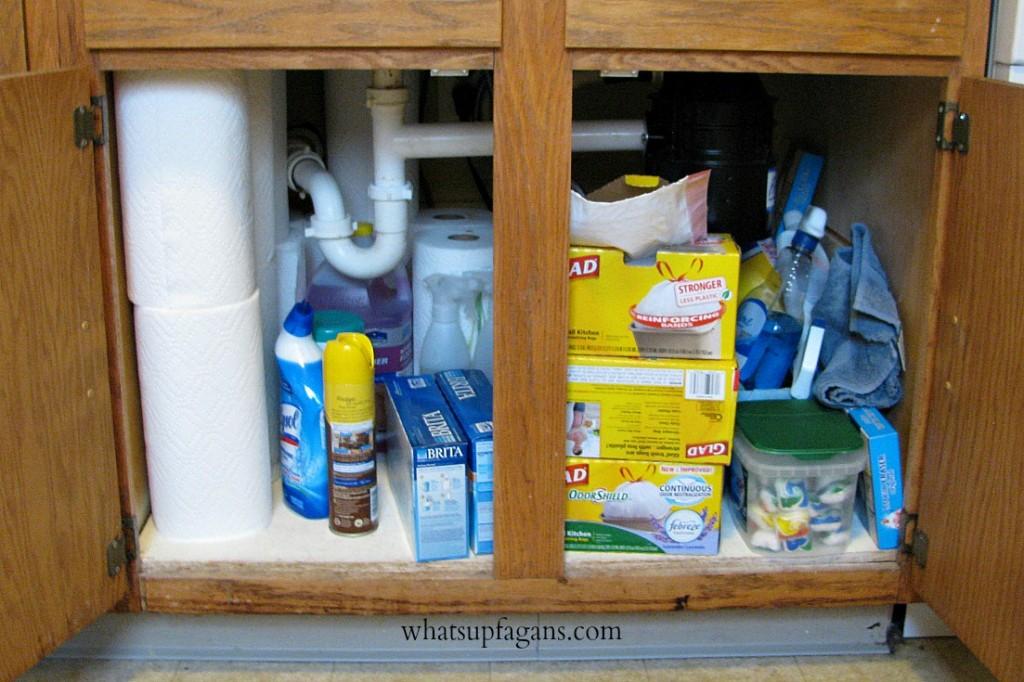 Organization - Small Apartment Under Sink Storage