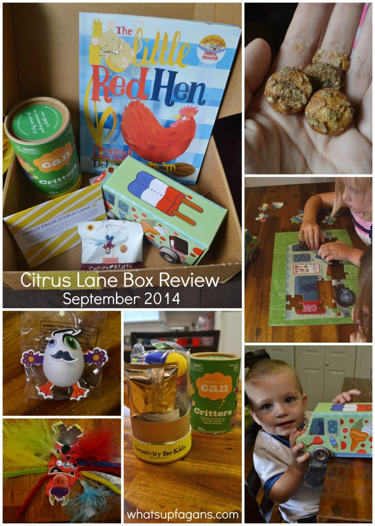 What you can find in a Citrus Lane Monthly Subscription Box for kids - REVIEW