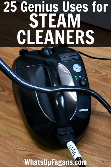 Steam Cleaner Uses for inside and outside the home