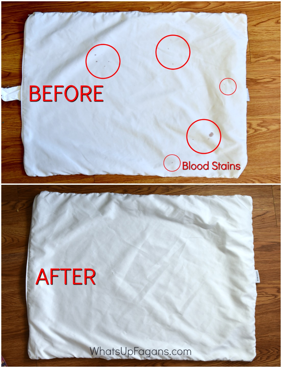 blood stain removal method with ammonia - hot iron laundry stain removal - how to get rid of blood stain on fabric, clothes, sheets, pillow case with ammonia, cleaning tutorial tip