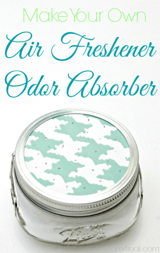 Make your own air freshener odor absorber
