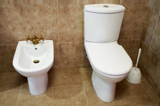 A clean toilet and bidet