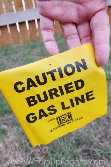gas line - before growing seedlings check for it