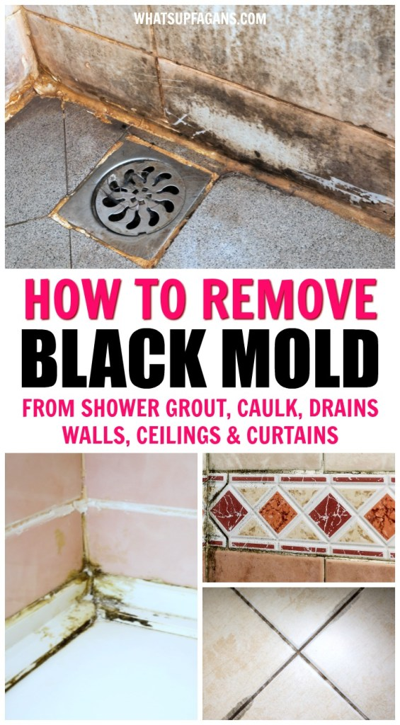 """collage of black mold in showers with text overlay that says """"how to remove black mold from shower grout, caulk, drains, walls, ceilings, and curtains"""""""