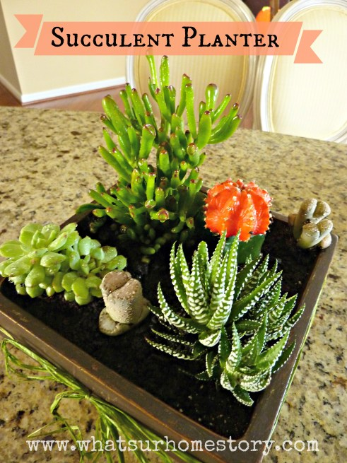 How to Make a Simple Succulent Planter Tutorial
