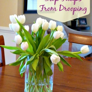 stop tulips from drooping