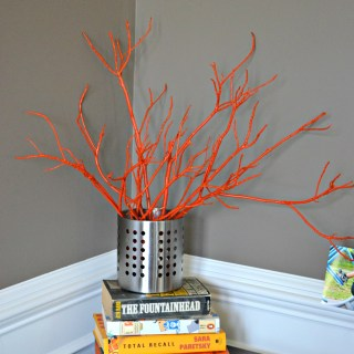 painted sticks diy,spraypaintedsticks,decoratingwithsticks,MarthaStewartBrookeTrout,